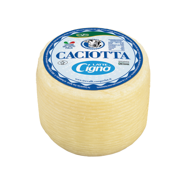 Caciotta